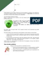 Apunte3-Tipos-1