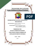 INFORME PRACTICAS Privadas Y Publicas-2013.doc