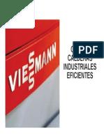 02 Tipologia de Calderas VIESSMANN Fenercom 2013