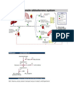 RAS (Renin-Angiotensin-Aldosteron).doc