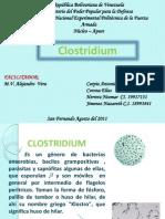 Sanidad Animal Enf Clostridiales