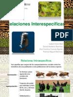 Relaciones Interespecíficas-Paisaje (2)