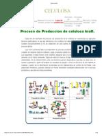 Proceso Licor Verde