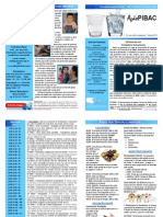 Informativo Setembro 2013