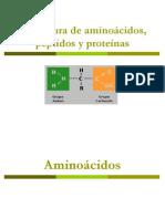 Estructura de aminoácidos.ppt