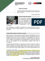 Ejemplo de Registro de Diario de Campo