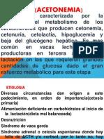 trabaCETOSIS (ACETONEMIA)