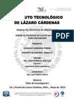 Protocolo Proyecto Carranza