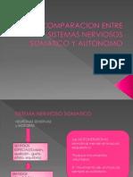 Comparacion Entre Sistemas Nerviosos Somatico y Autonomo