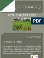 Presentacion, Actividad Agricola