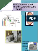 DETERMINACION DE ACIDOS GRASOS POR CROMATOGRAFÍA DE GASES