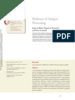 Vias de Procesamiento Del Antigeno