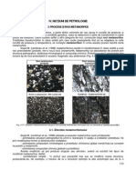 06. INTRODUCERE IN GEOLOGIE - CURS 06 - PETROLOGIE METAMORFICA.pdf
