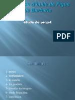 123318422 Presentation Exemple de Projet Figue de Barbarie