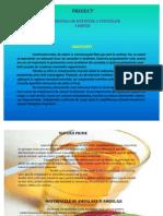 59297245-Tehnologia-de-Obtinere-a-Sucurilor-Limpezi-PreZentare.pdf
