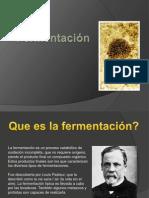 fermentacion