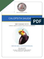 Laudo_Criadouro_M&M_Calôs
