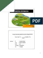 12 - BIOMASSA.pdf