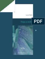 Lucian Pintilie - Pompa cu morfina.pdf