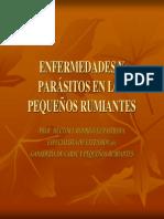 Conferencia Enfermedades y Parasitos Peque Os Rumiantes