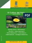 elcultivodelpaltoterceraedicin-130818102752-phpapp02