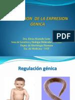 Genes Regulacion