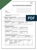 Planilla de Estilos y Condicionantes Del Aprendizaje 1.0