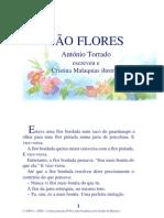 01.08 - São flores