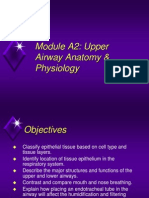 Module A2 Anatomy of Upper Airway.ppt