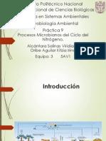 Práctica 9 microbiología seminario