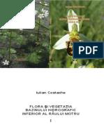 Flora si veghetatia bazinului hidrografic a riului Motru