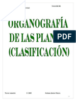 clasificacion-110518202448-phpapp02