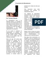 Historia de La Mercadotecnia. SAIA