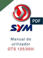 Manual GTS125 300i