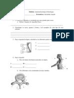 Teste de Osteologia - Turma de Massagem de LISBOA