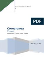 Coroziunea.doc
