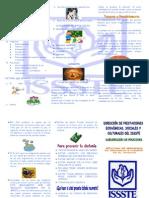TRIPTICOS SSL.2013-CUIDADO DE LA VOZ.pdf