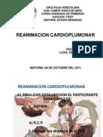 REANIMACION CARDIOPLUMONAR