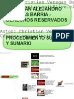 94696366 6 Procedimiento Sumario e Incidental Realizado Por Christian Venegas Barria