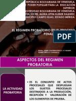 Regimen Probatoria de Derecho Procesal