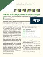 Stades phénologiques repères de la vigne.pdf