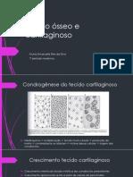 Tecido ósseo e cartilaginoso - apresentação histologia.pptx
