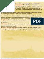 Manual de Bonsais