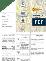 Triptique ateliers CEIBA.doc