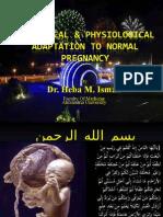 Anatomical Physiological Adaptation