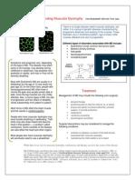 FactSheetMD2.doc