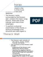 anatomy presentation ho10(Thorax 1)