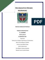 El Jengibre-documento Feria de Ciencias