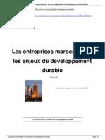Les Entreprises Marocaines Et Les Enjeux Du Developpement Durable a170