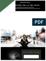 Auto_bilan_energie.pdf